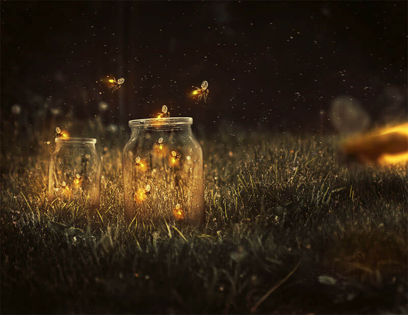 glowing-fireflies-photo-manipulation