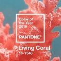 2019年の色が決定!美しいサンゴのような「リビング・コーラル Living Coral」パントンから発表