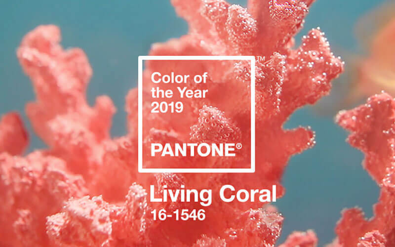 2019 living coral - Coral paint color for living room ...