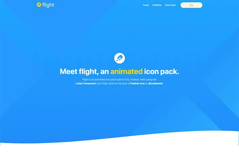 flight_icon