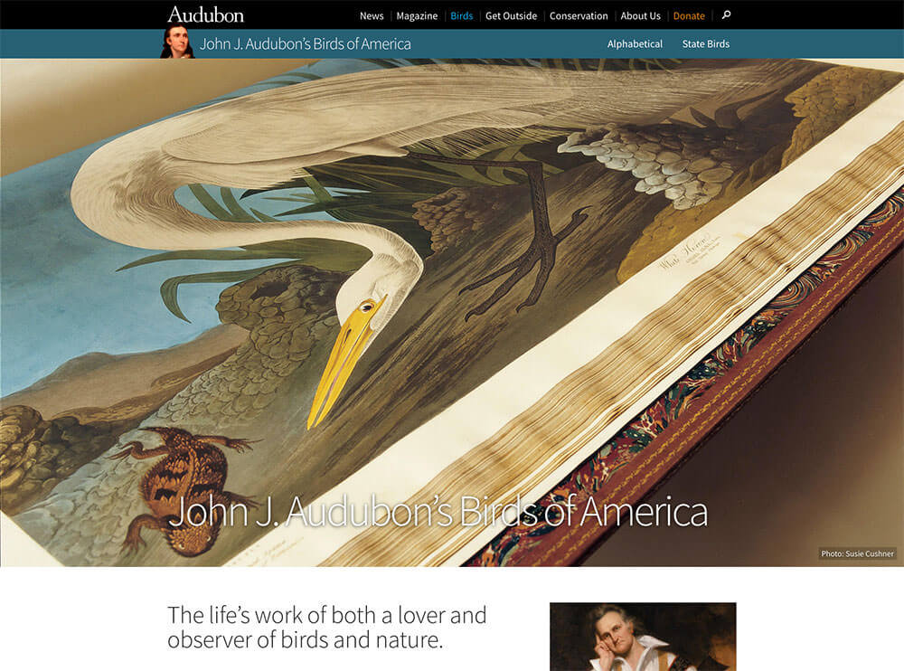 john_james_audubon_s_birds_of_america___audubon-1