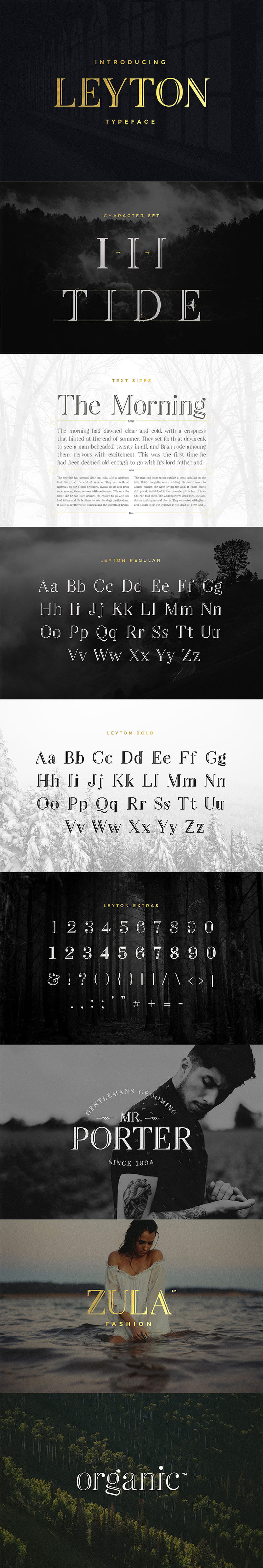 the-exclusive-display-font-selection-h1