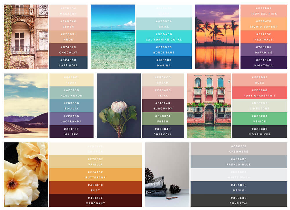color_palettes_with_flexbox__study_2_-1