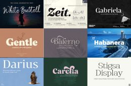 deliciously-versatile-font-collection-feat-image-1