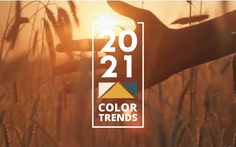 color-trend-2021-from-shutterstock