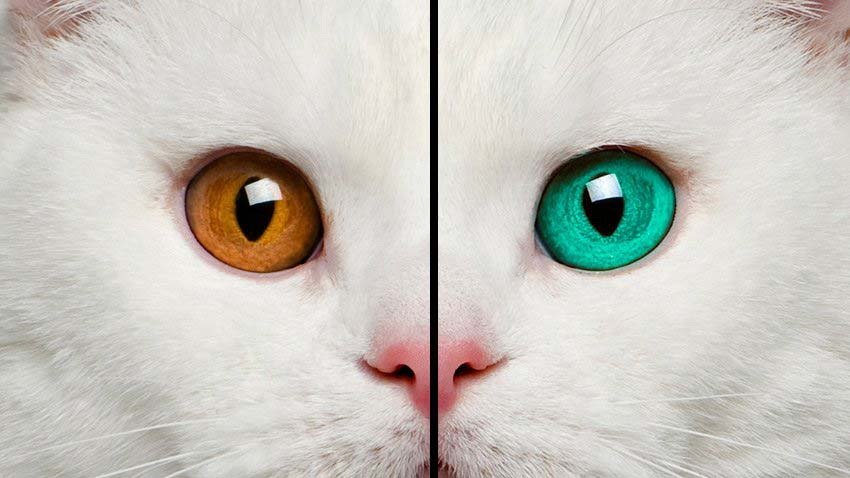 change-eye-color-in-photoshop-final